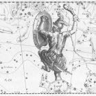Dirimbilim Günlüğü: Şeftali, Kelile ve Dimne, balina, cennet borazanı